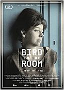 Bird in the Room