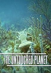 Untouched Planet - Episode 4